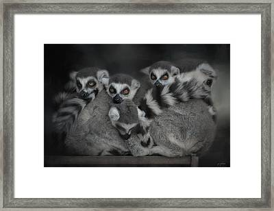 Sunday With The Family Framed Print by Jai Johnson