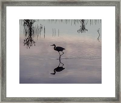 Sundown Heron Silhouette Framed Print
