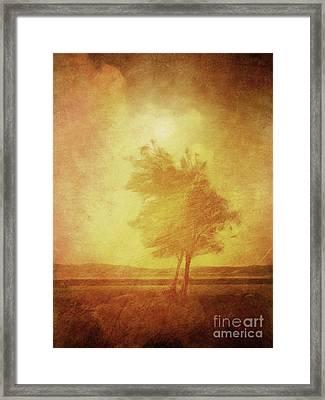 Sundown Landscape Framed Print