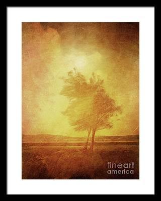 Lonly Framed Prints