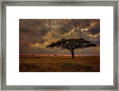 Sundown, Namiri Plains Framed Print