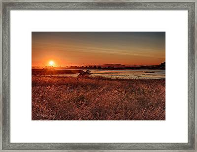 Sundown On Elkhorn Slough Framed Print by Bill Roberts