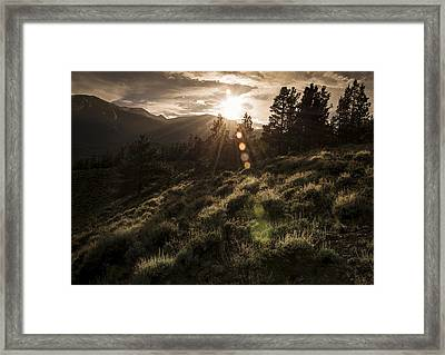 Sundown Framed Print by The Forests Edge Photography - Diane Sandoval