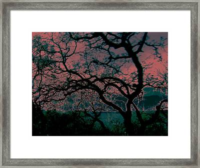 Sundown Framed Print by Tim Tanis