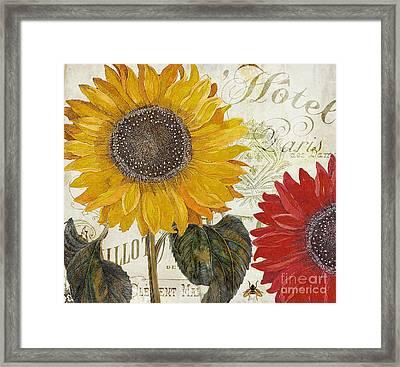 Sundresses Framed Print