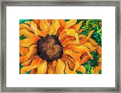 Sunflower #5 Framed Print