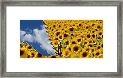 Sunflower And Blue Sky Framed Print by Daniela Guidotti