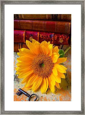 Sunflower And Leather Books Framed Print by Garry Gay
