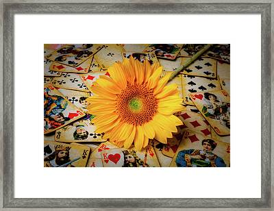 Sunflower And Old Playing Cards Framed Print by Garry Gay