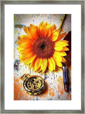 Sunflower And Pocktwatch Framed Print by Garry Gay