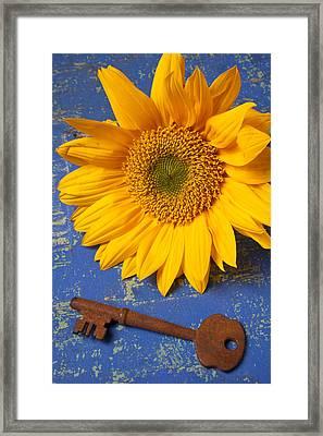 Sunflower And Skeleton Key Framed Print by Garry Gay