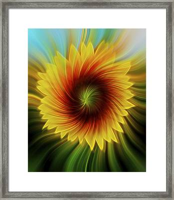 Sunflower Beams Framed Print