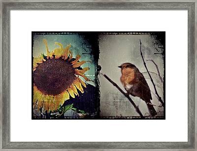 Sunflower Bird Diptych Framed Print