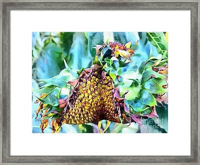 Sunflower Carnaval - Carnaval De Girasole Framed Print by Janine Riley