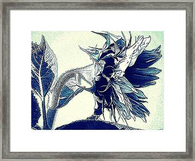 Sunflower - China Blue On White  Framed Print