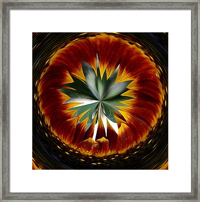 Sunflower Circle Framed Print