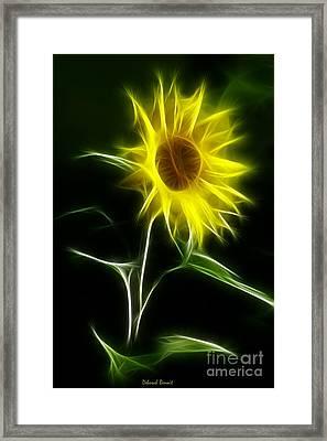 Sunflower Display Framed Print