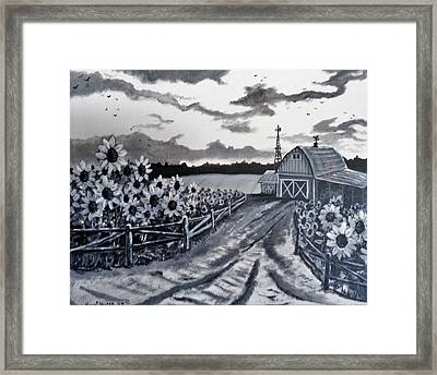 Sunflower Farm Framed Print by Kevin F Heuman
