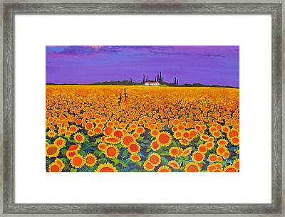 Sunflower Field Framed Print by Anne Marie Brown