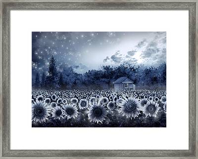 Sunflower Field  Framed Print by Bekim Art
