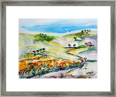 Sunflower Fields Framed Print by Ginette Callaway