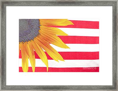 Sunflower Flag Framed Print by James BO  Insogna