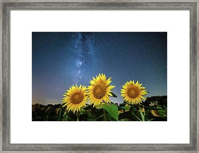 Sunflower Galaxy II Framed Print