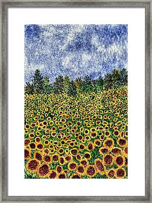 Sunflower Galaxy Framed Print by Thom Glace