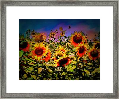 Sunflower Breeze Framed Print