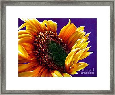 Sunflower Framed Print by Jurek Zamoyski