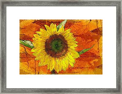 Sunflower Leaf Impressions Framed Print