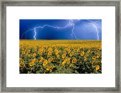 Framed Print featuring the photograph Sunflower Lightning Field  by James BO  Insogna