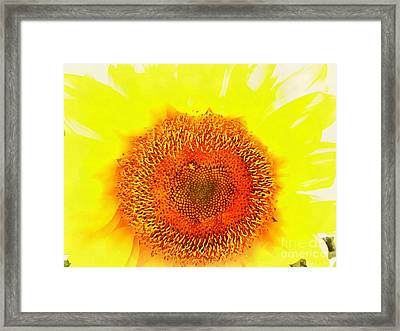 Sunflower - Love Blooming Framed Print