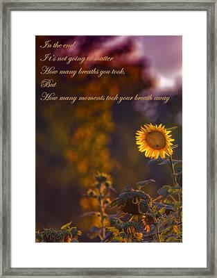 Sunflower Moments Framed Print