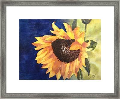 Sunflower Framed Print by Monika Deo
