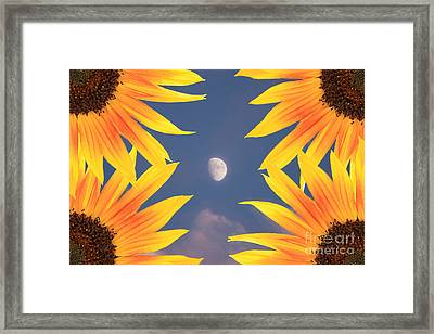 Sunflower Moon Framed Print