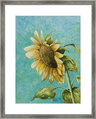 Sunflower Number One Framed Print