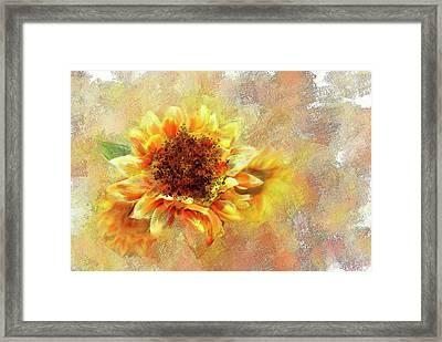 Sunflower On Fire Framed Print