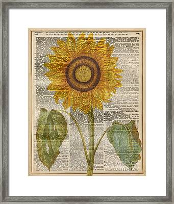 Sunflower Over Dictionary Page Framed Print by Jacob Kuch