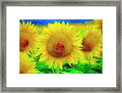 Sunflower Posing Framed Print by Jeffrey Kolker