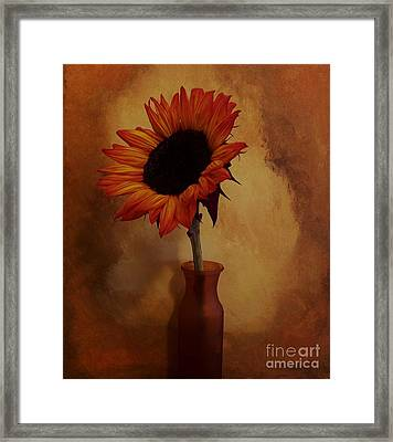 Sunflower Seed Maker Framed Print by Marsha Heiken