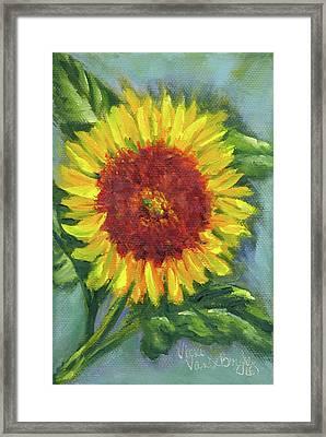 Sunflower Seed Packet Framed Print