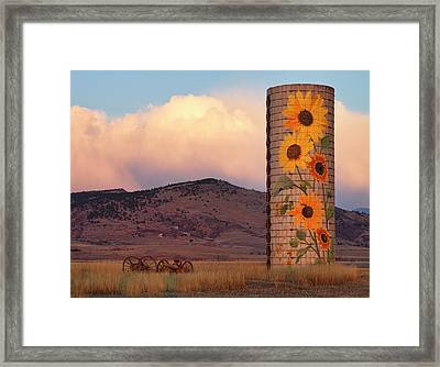 Sunflower Silo In North Boulder County Colorado Color Print Framed Print by James BO  Insogna