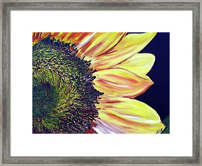 Sunflower Single Framed Print by Maria Soto Robbins