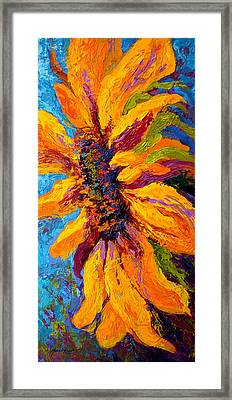 Sunflower Solo II Framed Print by Marion Rose