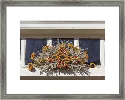 Sunflower Spray Prentis Store Framed Print by Teresa Mucha