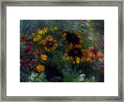 Sunflower Streaks Framed Print