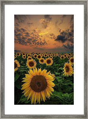 Framed Print featuring the photograph Sunflower Sunset  by Aaron J Groen