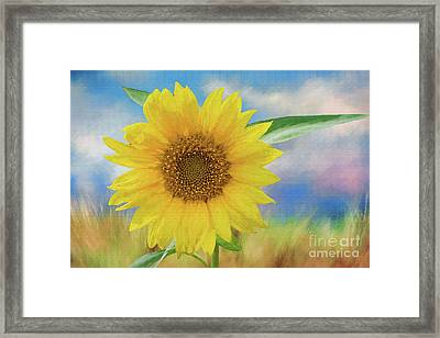 Framed Print featuring the photograph Sunflower Surprise by Bonnie Barry