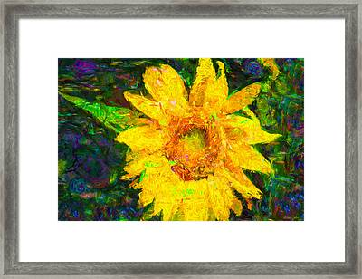 Sunflower Van Gogh Framed Print